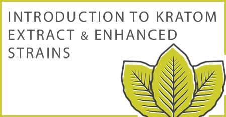 introduction to kratom extract and enhanced strains